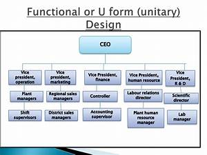 Financial Controller Organizational Chart Presentation On Basic Forms Of Organizations Design
