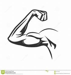 Muscular Arm Flexing Bicep. Vector Illustration Stock ...