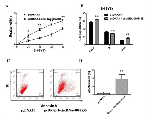 (A) CCK8 assay showing overexpression of circRNA-0067835 ...