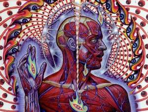 'Lateralus' Is Apparently The Greatest Tool Song | Antiquiet