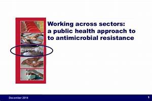 Working across sectors: a public health approach to ...