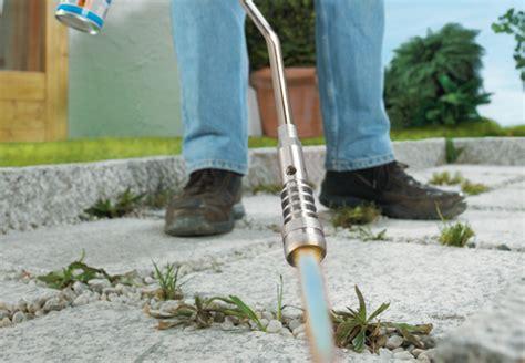 Unkraut Schnell Entfernen by Bei Unkraut Im Garten Wirken Die Nachhaltigen Tipps Obi