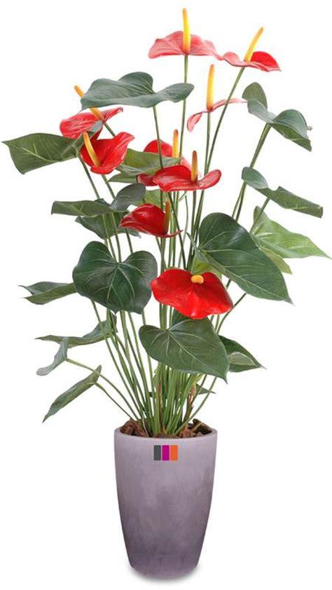 plante fleurie en pot exterieur plante artificielle fleurie anthurium en pot plante d int 233 rieur h 75cm
