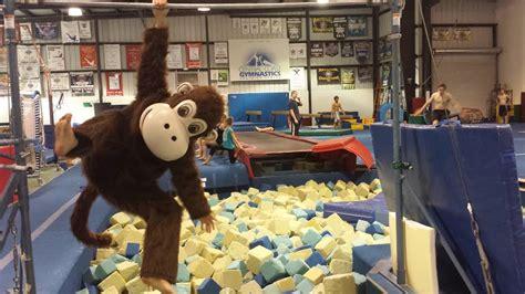 central coast gymnastics 187 preschool 736 | Freddy Flips on Pit Bar at CCG