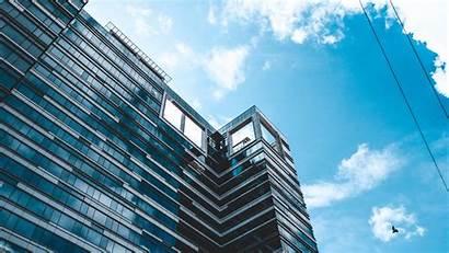 Birds Wire Sky Building 4k