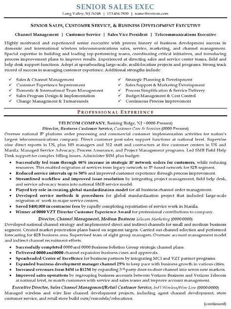 resume sle 16 senior sales executive resume career