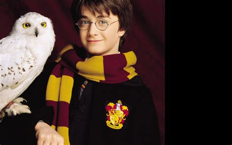 Harry Potter Wallpaper Hedwig Owl by Harry And Hedwig Harry Potter And The Sorceror S
