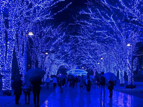 worlds  christmas lights conde
