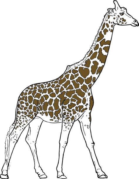 giraff animal outline clip art  clkercom vector clip