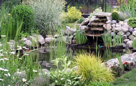 petit bassin de jardin petits bassins de jardin comment les installer pratique fr