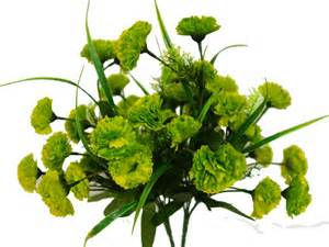 252 Carnation Flowers - Lime Green | eFavorMart
