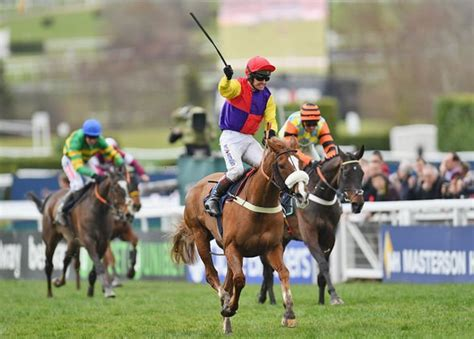 cheltenham express sport tipster horses must today bets britain provide another getty hand