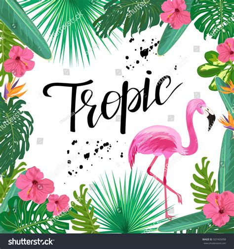 tropical wild templat bright template tropical plants flowers pink stock vector
