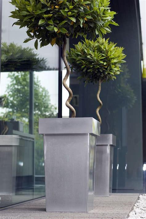 contemporary pot plants best 25 contemporary planters ideas on pinterest contemporary gardens contemporary garden