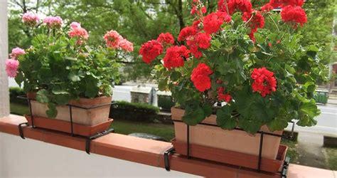 portavasi da ringhiera abbelliamo i vostri balconi balconiere e portavasi per