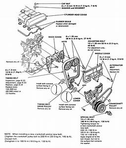 How To Change The Belts On A 1992 Acura Vigor