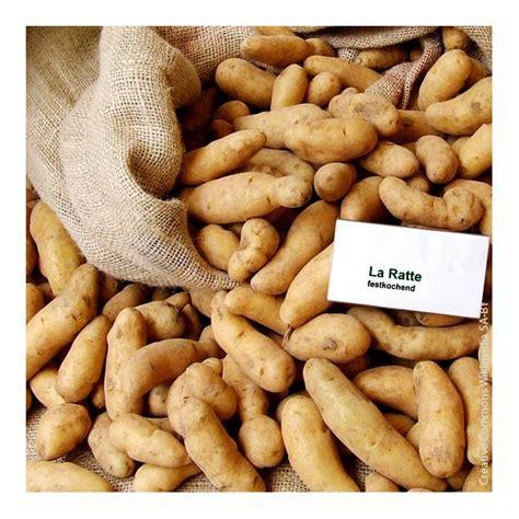 cuisiner des pommes de terre ratte desjardins fr