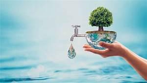 Teststreifen Für Wasser : weltwassertag 140 liter wasser f r eine tasse kaffee ~ Whattoseeinmadrid.com Haus und Dekorationen