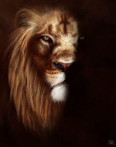 The gallery for --> Lion Roar Side View