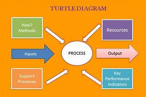 How To Make Turtle Diagram For Health And Safety