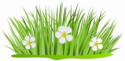 Grass Patch Clip Flowers Clipart Flower Patches