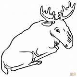 Moose Coloring Pages Sitting Cute Bull Drawing Printable Alaska Getdrawings Cif Supercoloring Dot Paper Categories Adults sketch template