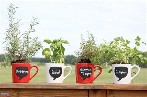 Coffee Mug Herb Garden Tutorial