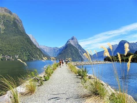 Milford Sound The Most Unique Landscape In New Zealand