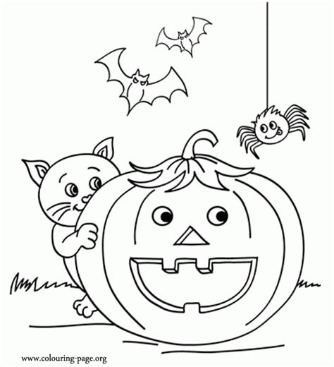 pumpkin coloring pages for preschool get this pumpkin coloring pages for preschoolers 89461 963