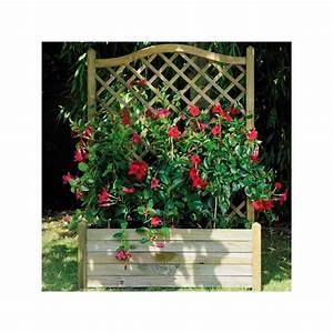 Jardiniere Avec Treillis Carrefour : jardini re avec treillis autoclave 80x40x152cm 64 5l ~ Dailycaller-alerts.com Idées de Décoration