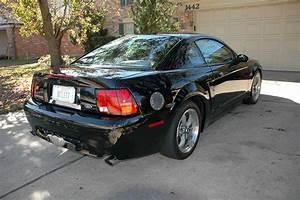 4th gen black 2001 Ford Mustang Bullitt GT V8 5spd [SOLD] - MustangCarPlace