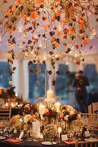 Picking, The, Perfect, Natural, Autumn, Decorations