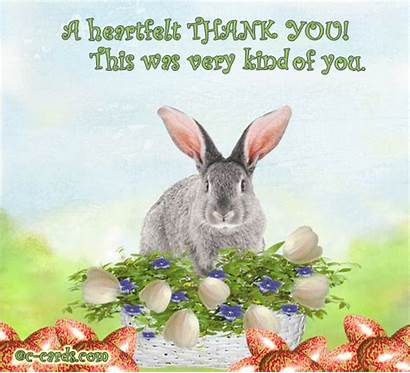 Easter Thank Talking Bunny Card Thankyou Cards