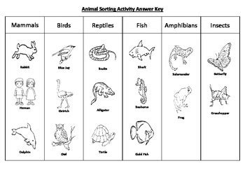 Animal Sorting Activity by Teaching Two Teachers Pay