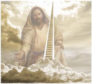 Jesus Our Elder Brother | TrueObedience.org