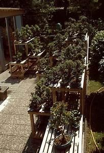 Ueber uns for Garten planen mit bonsai 1 jahr