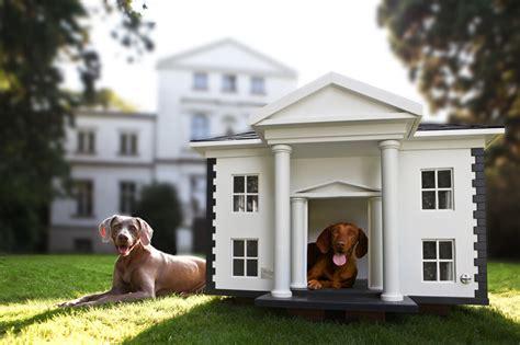 dog houses luxury amazing friend digsdigs alabama