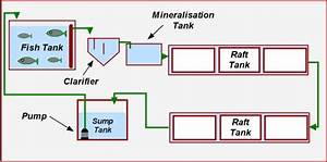 Floating Raft Aquaponics   What Is Aquaponics