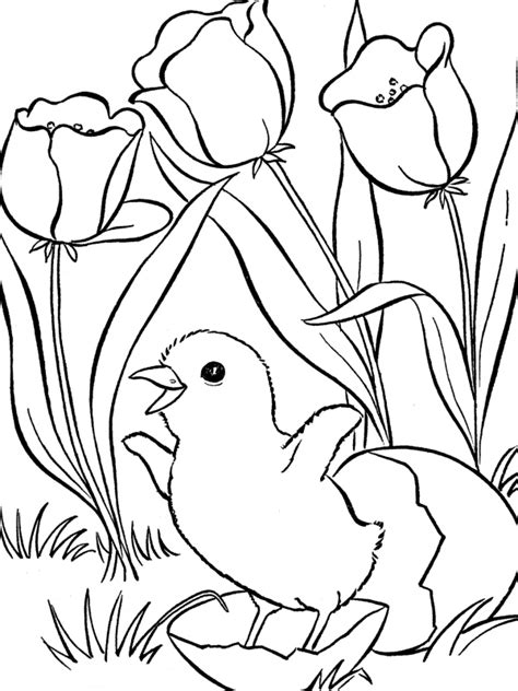 Coloring Easter Pages by Easter Coloring Pages Coloring Pages