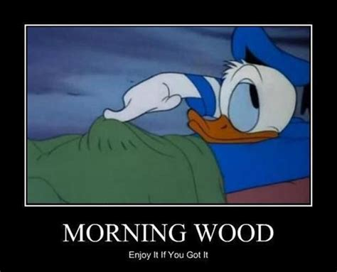 Morning Wood Meme - dirty morning wood quotes quotesgram