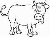 Coloring Herd Cows Cow Popular sketch template