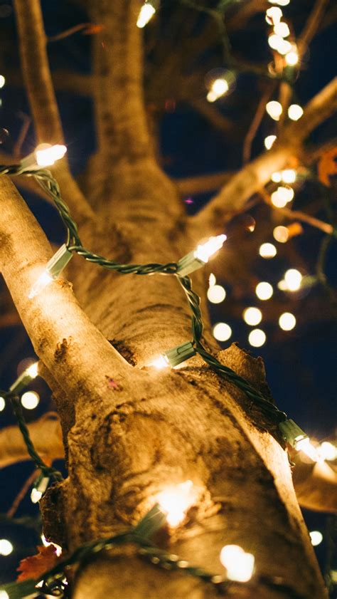 Download hd christmas tree photos for free on unsplash. 40 HD CHRISTMAS I PHONE WALLPAPER FREE TO DOWNLOAD ...