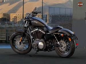 Harley Davidson 883 Iron Wallpaper - WallpaperSafari