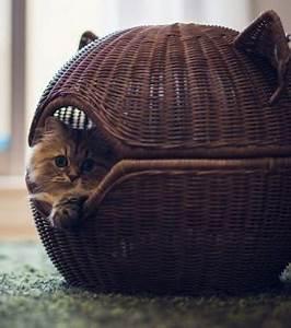 Panier Pour Chat Original : photo paniers pour chats couchage en osier et repos assur ~ Teatrodelosmanantiales.com Idées de Décoration