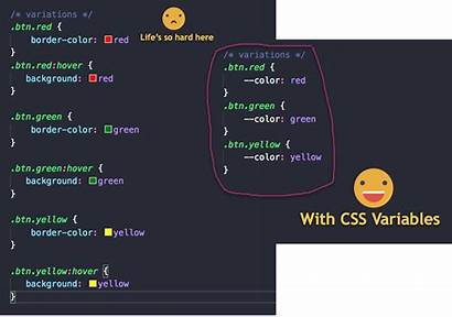 Programming Variables Languages Css Freecodecamp Support