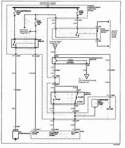 Wire Diagrams For Hyundai  Wire  Free Engine Image For