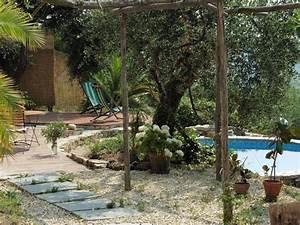 Siemens E14 3f : palme f r garten palme im garten pflanzen palme im garten ~ Michelbontemps.com Haus und Dekorationen