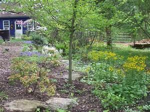 Rain Gardens Ann Drainage Schumacher Associates