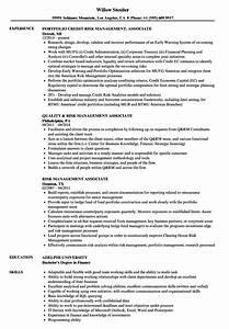 automated resume builder risk management associate resume samples velvet jobs