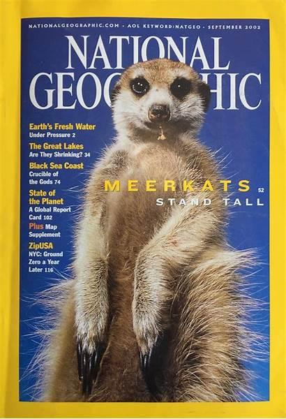 Geographic National Magazine 2002 Allen Sea Fox